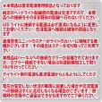 画像4: モンキー純正ヘッドライト用 カスタマイズLEDヘッドライトユニット (4)