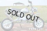 キットバイク49ccエンジン搭載 TYPE-EF50